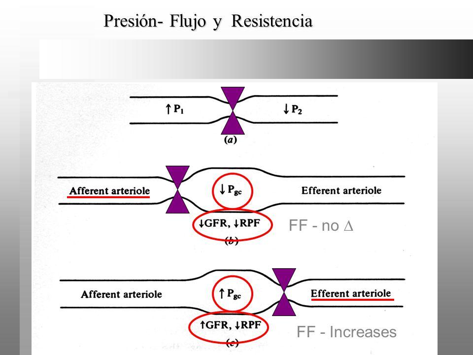 Presión- Flujo y Resistencia