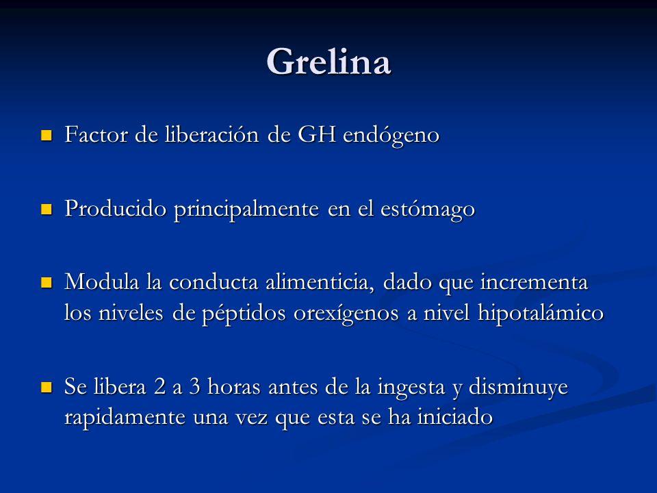 Grelina Factor de liberación de GH endógeno