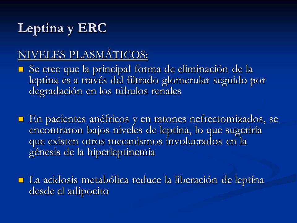 Leptina y ERC NIVELES PLASMÁTICOS: