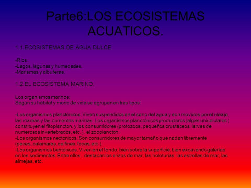 Parte6:LOS ECOSISTEMAS ACUATICOS.
