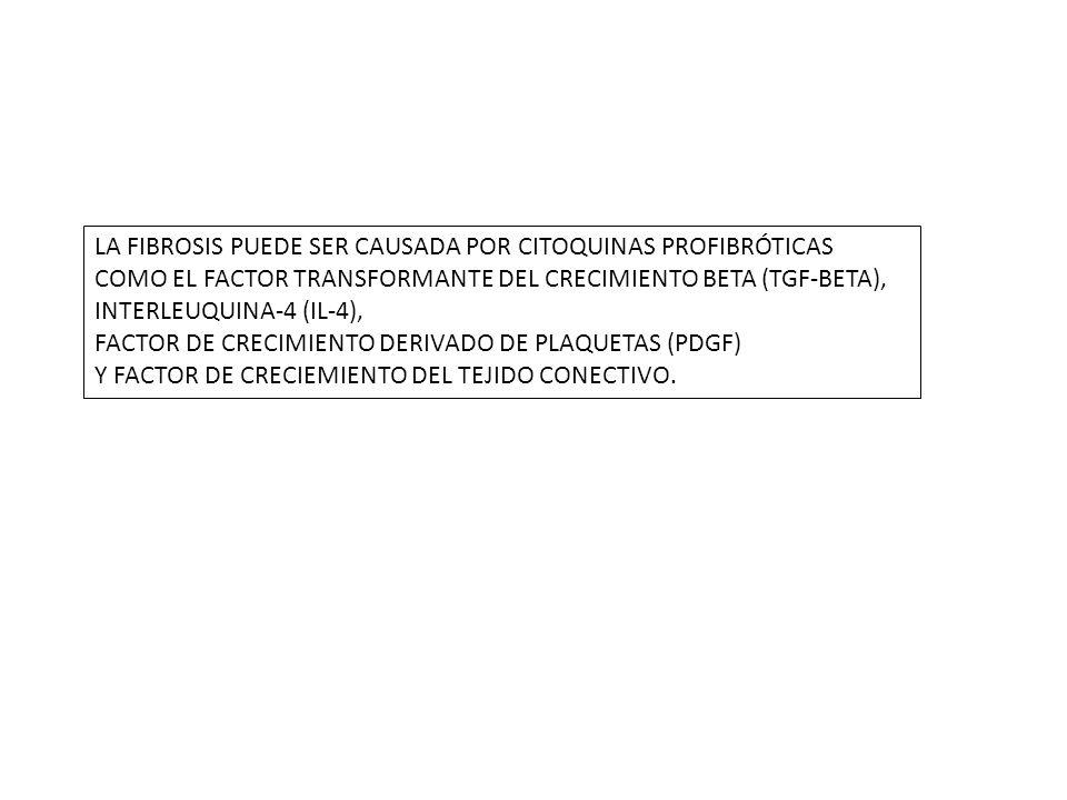 LA FIBROSIS PUEDE SER CAUSADA POR CITOQUINAS PROFIBRÓTICAS COMO EL FACTOR TRANSFORMANTE DEL CRECIMIENTO BETA (TGF-BETA), INTERLEUQUINA-4 (IL-4),