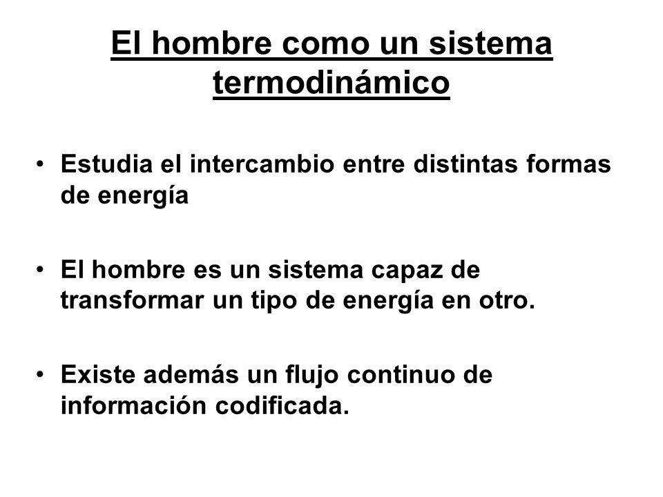 El hombre como un sistema termodinámico