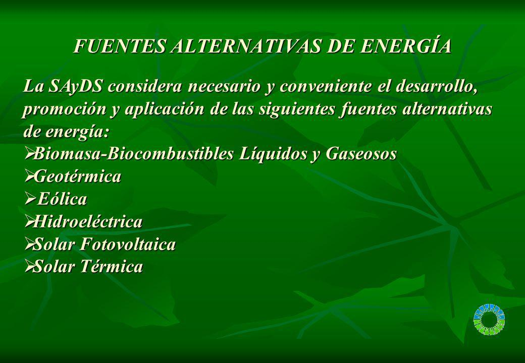 ENERGIAS RENOVABLES BIOCOMBUSTIBLES