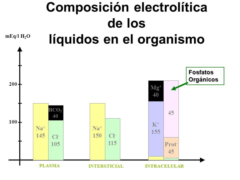 Composición electrolítica de los líquidos en el organismo