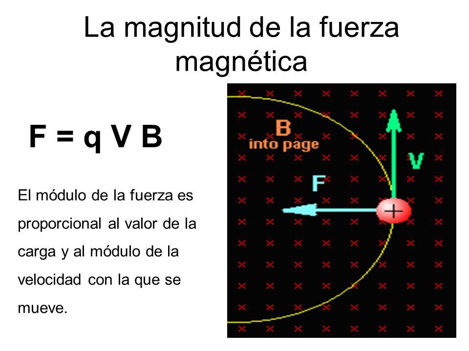 La magnitud de la fuerza magnética