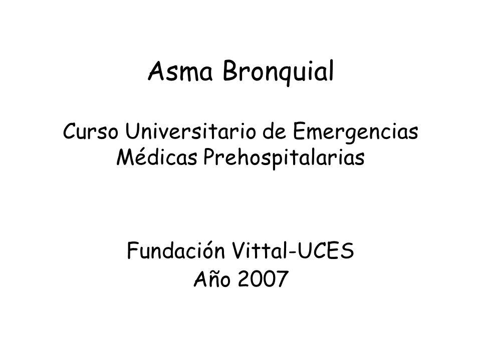 Fundación Vittal-UCES Año 2007