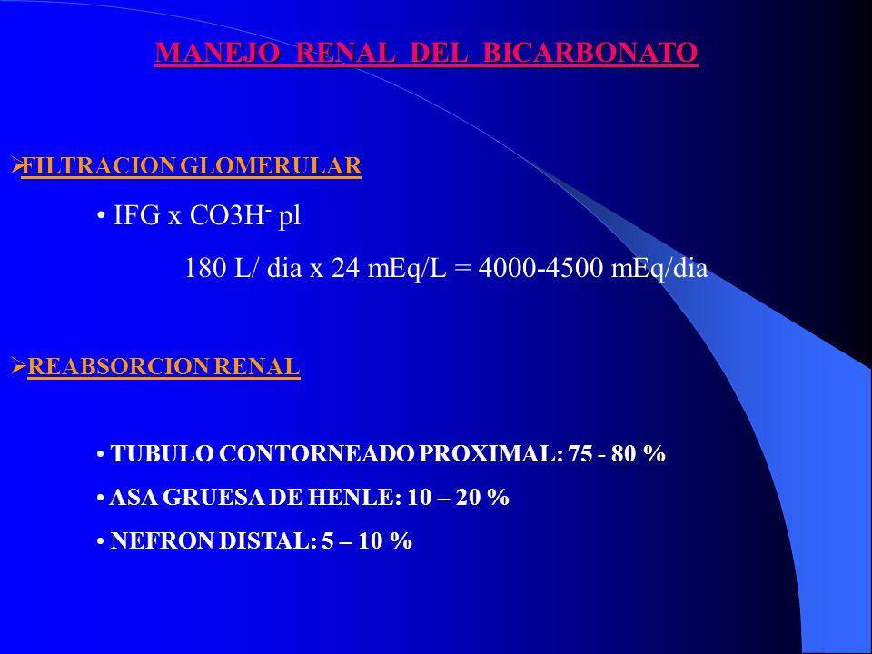 MANEJO RENAL DEL BICARBONATO