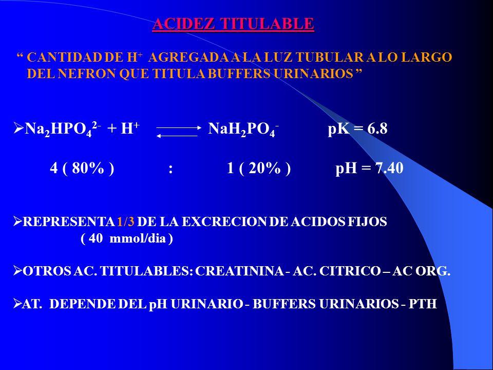 ACIDEZ TITULABLE Na2HPO42- + H+ NaH2PO4- pK = 6.8