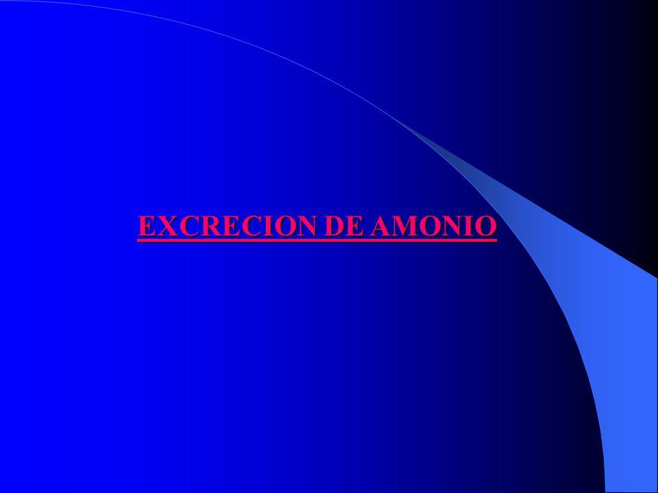 EXCRECION DE AMONIO