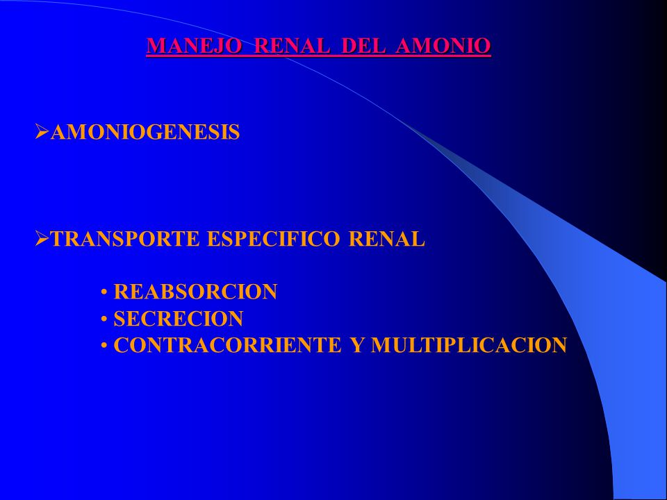 MANEJO RENAL DEL AMONIO