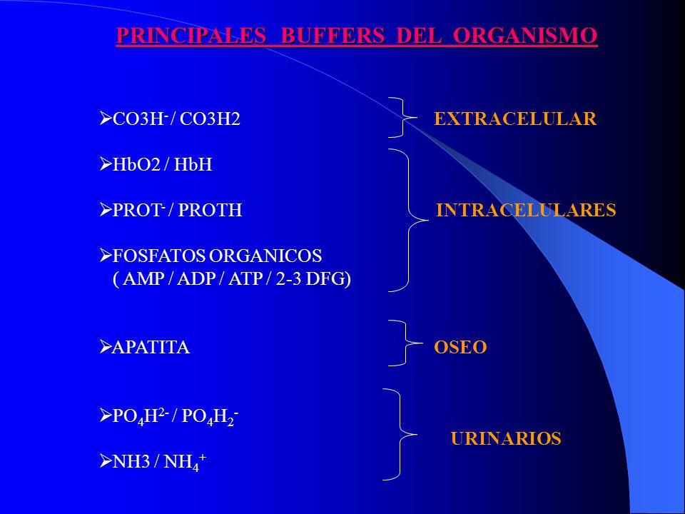 PRINCIPALES BUFFERS DEL ORGANISMO