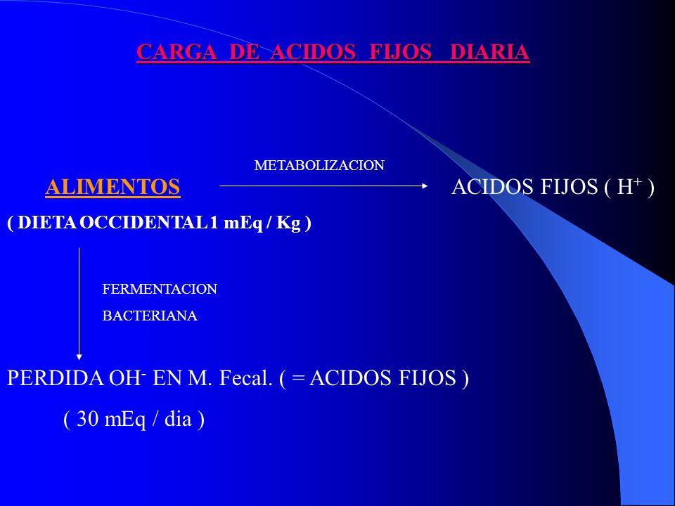 CARGA DE ACIDOS FIJOS DIARIA