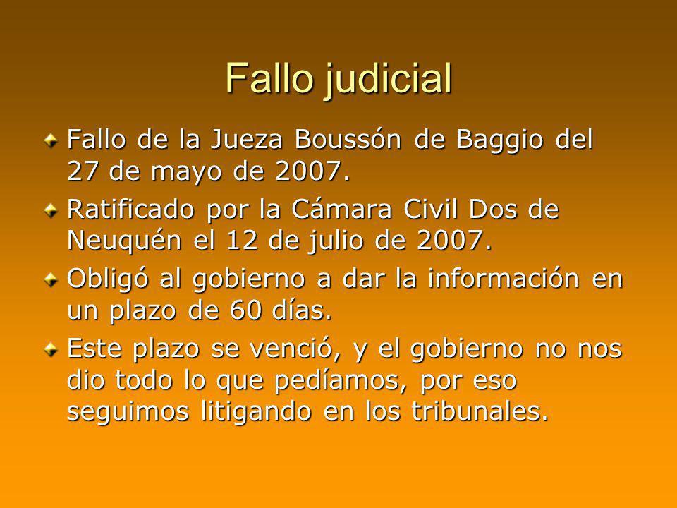 Fallo judicial Fallo de la Jueza Boussón de Baggio del 27 de mayo de 2007. Ratificado por la Cámara Civil Dos de Neuquén el 12 de julio de 2007.