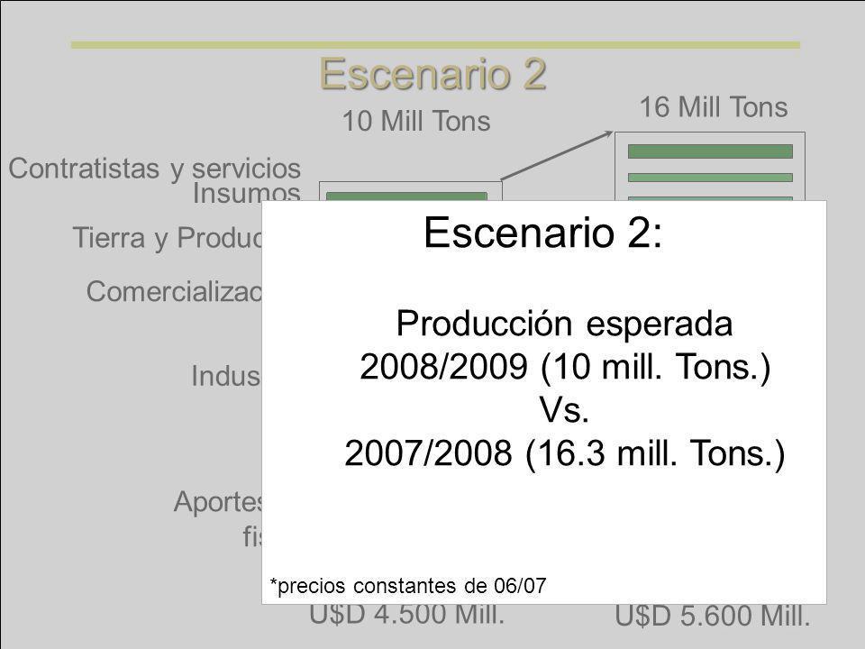 Producción esperada 2008/2009 (10 mill. Tons.)