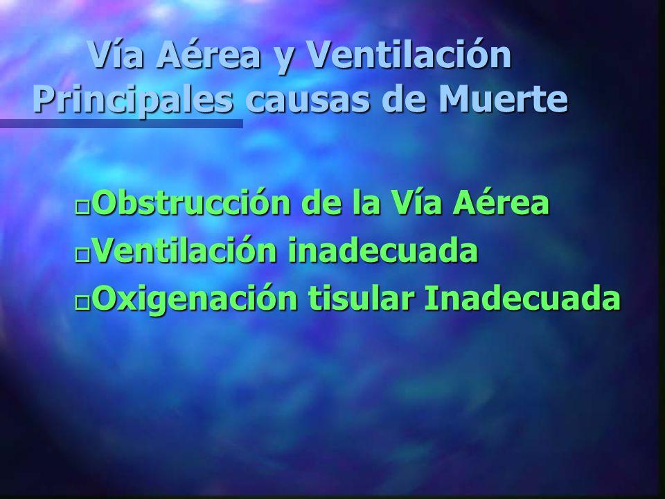 Vía Aérea y Ventilación Principales causas de Muerte