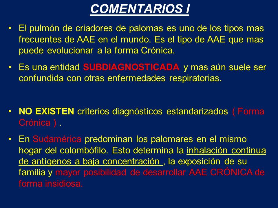 COMENTARIOS I