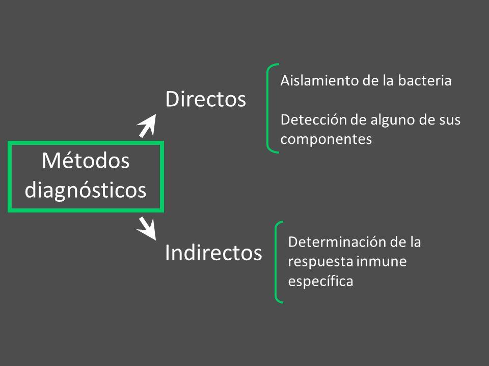 Directos Métodos diagnósticos Indirectos Aislamiento de la bacteria