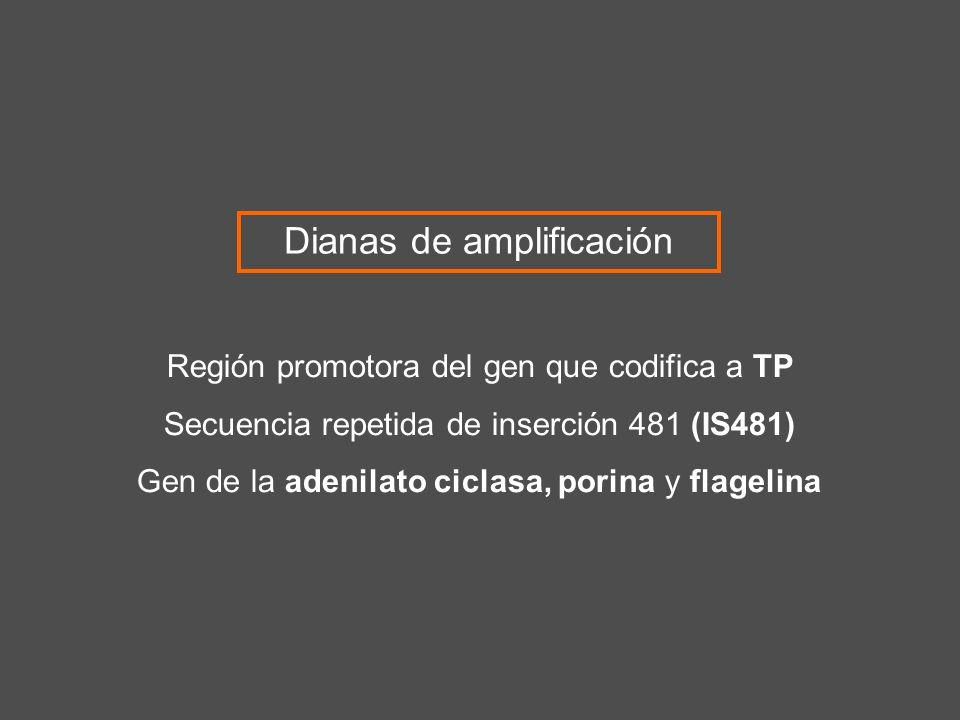 Dianas de amplificación