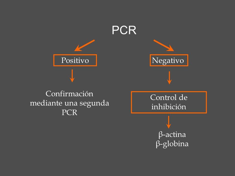 Confirmación mediante una segunda PCR
