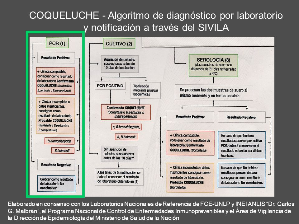 COQUELUCHE - Algoritmo de diagnóstico por laboratorio