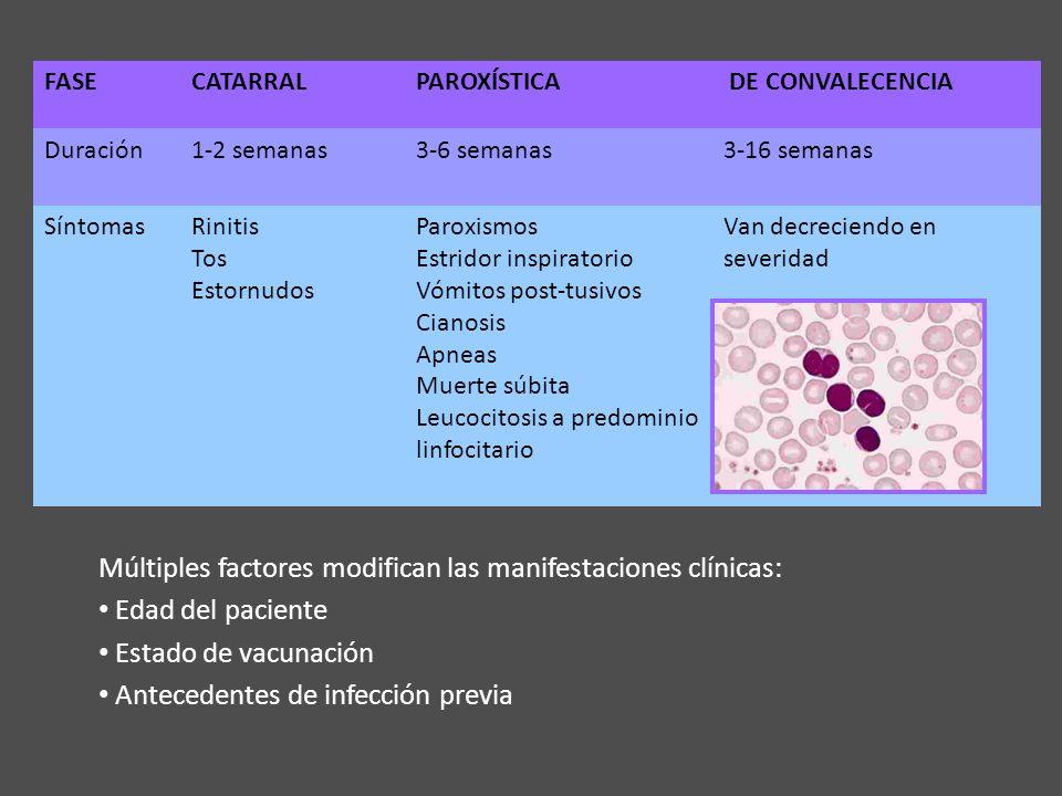 Múltiples factores modifican las manifestaciones clínicas: