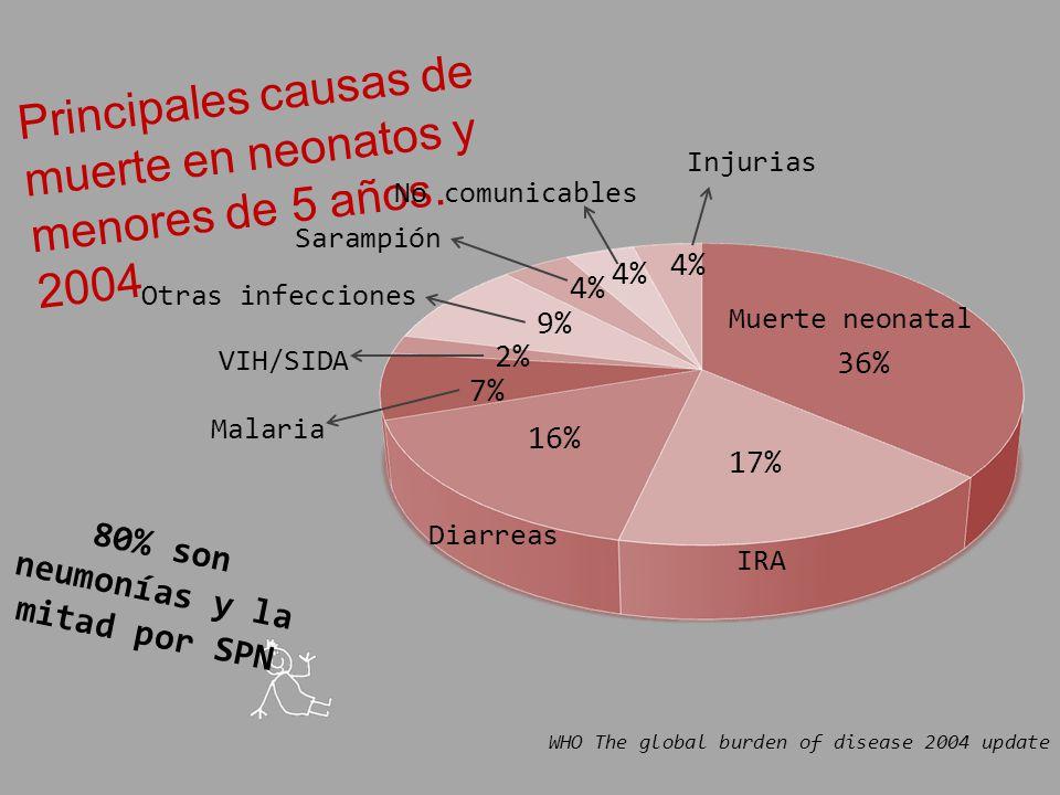 80% son neumonías y la mitad por SPN