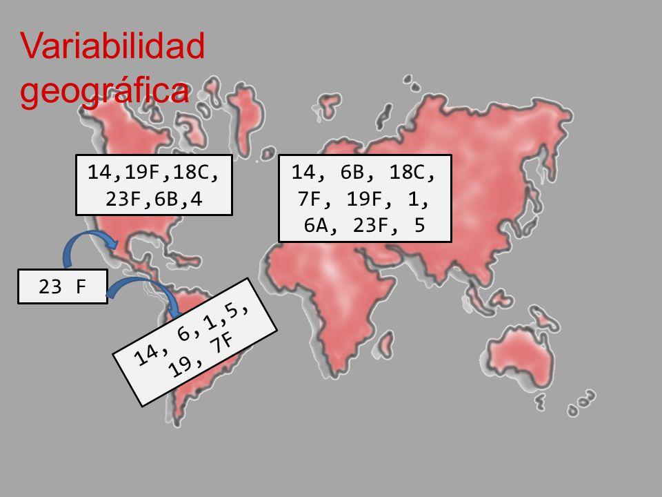 Variabilidad geográfica