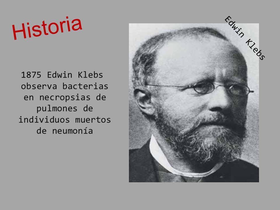 Historia Edwin Klebs.