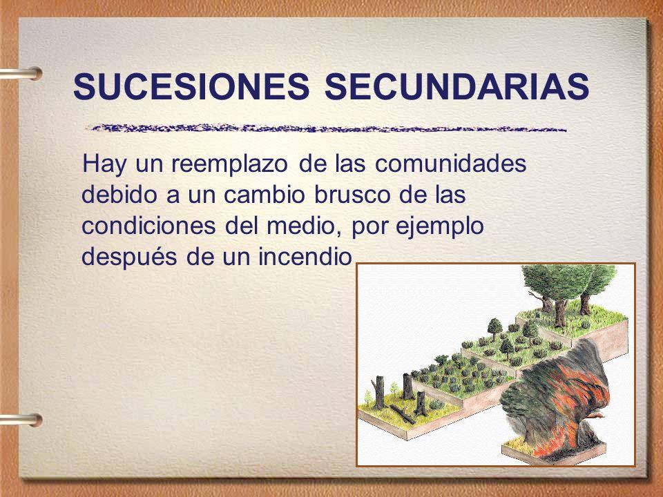 SUCESIONES SECUNDARIAS