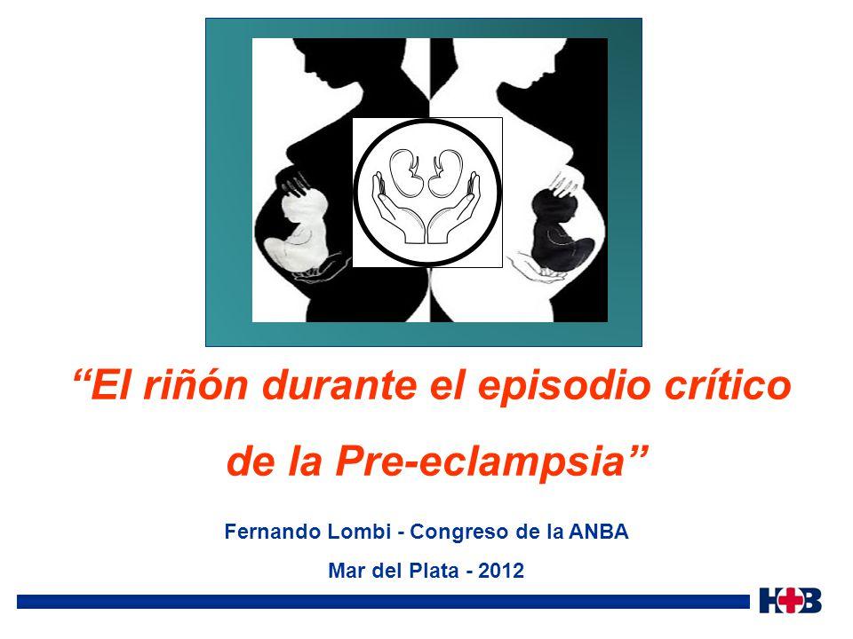 El riñón durante el episodio crítico de la Pre-eclampsia