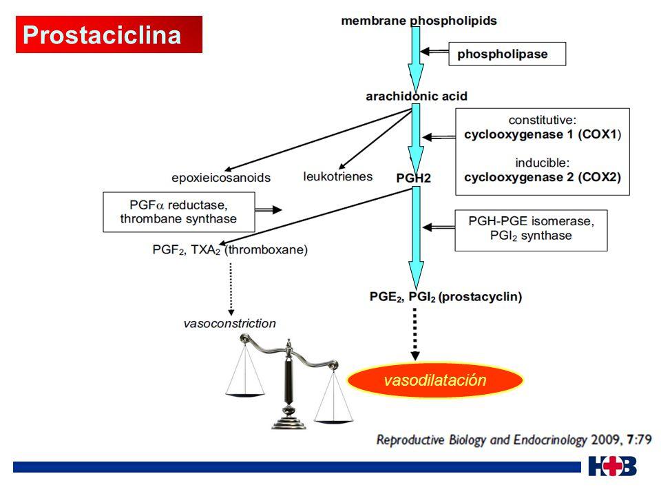 Prostaciclina vasodilatación