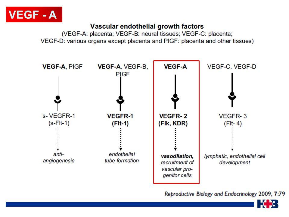 VEGF - A