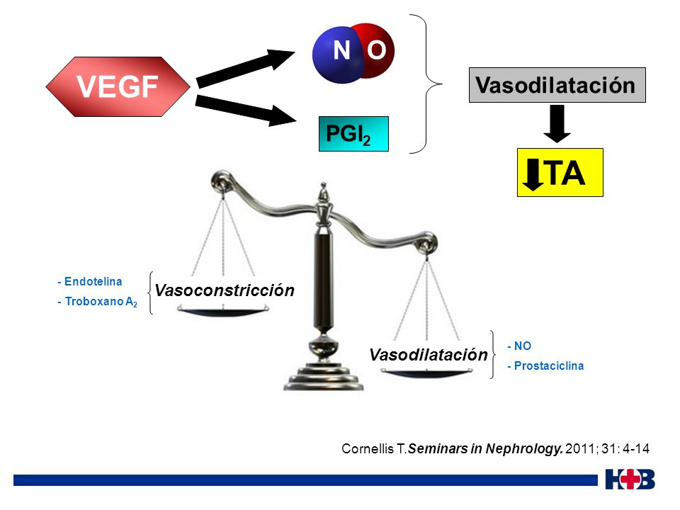 TA VEGF N O Vasodilatación PGI2 Vasoconstricción Vasodilatación