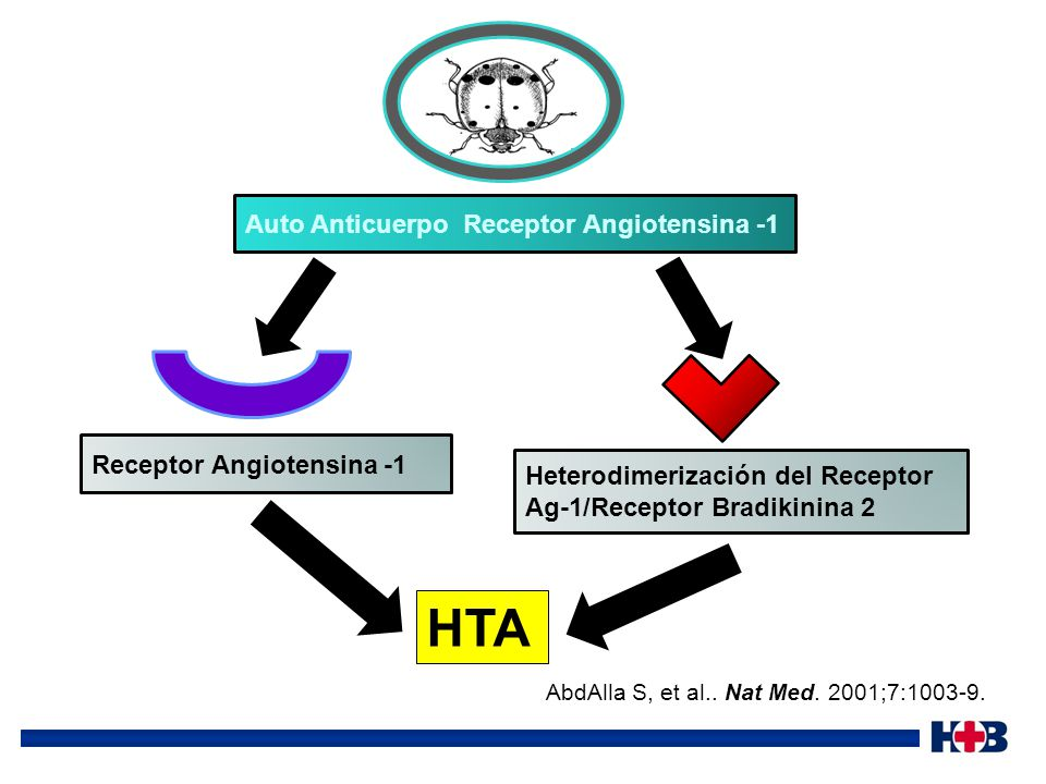HTA Auto Anticuerpo Receptor Angiotensina -1 Receptor Angiotensina -1