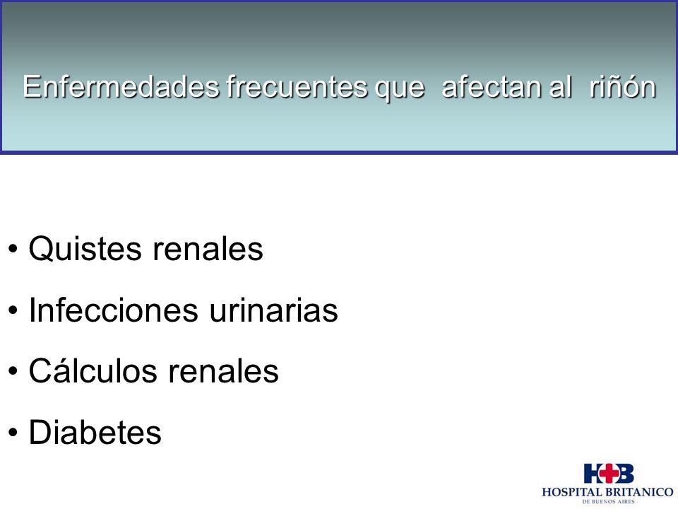 Enfermedades frecuentes que afectan al riñón