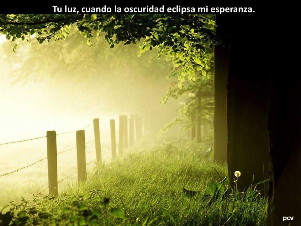 Tu luz, cuando la oscuridad eclipsa mi esperanza.