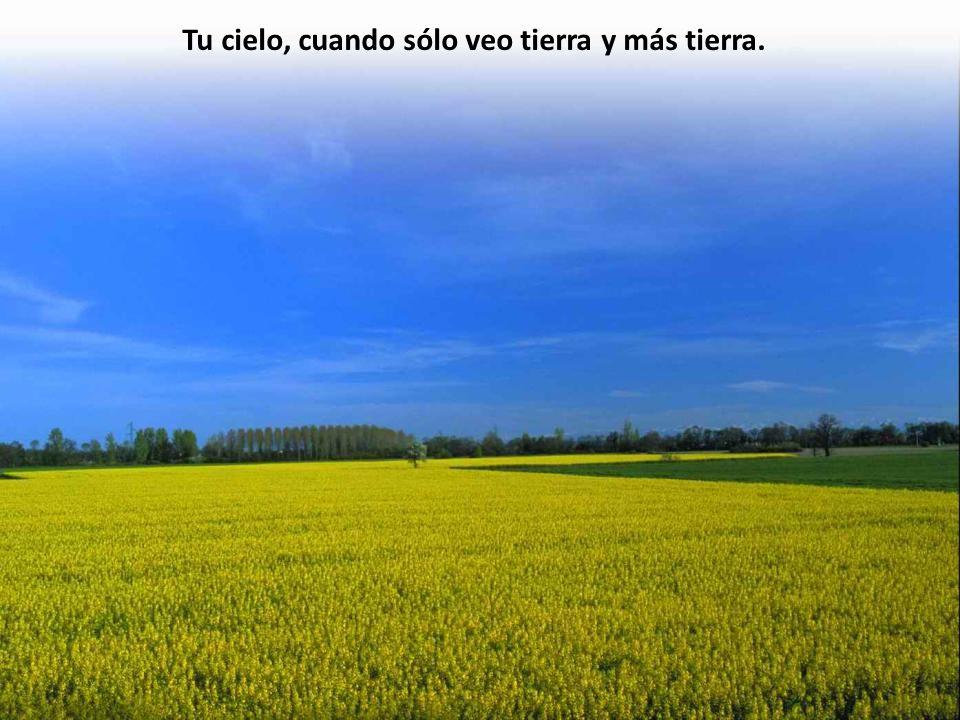 Tu cielo, cuando sólo veo tierra y más tierra.