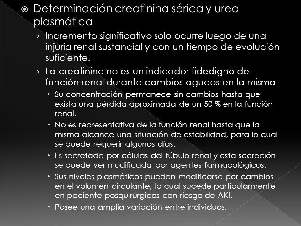 Determinación creatinina sérica y urea plasmática