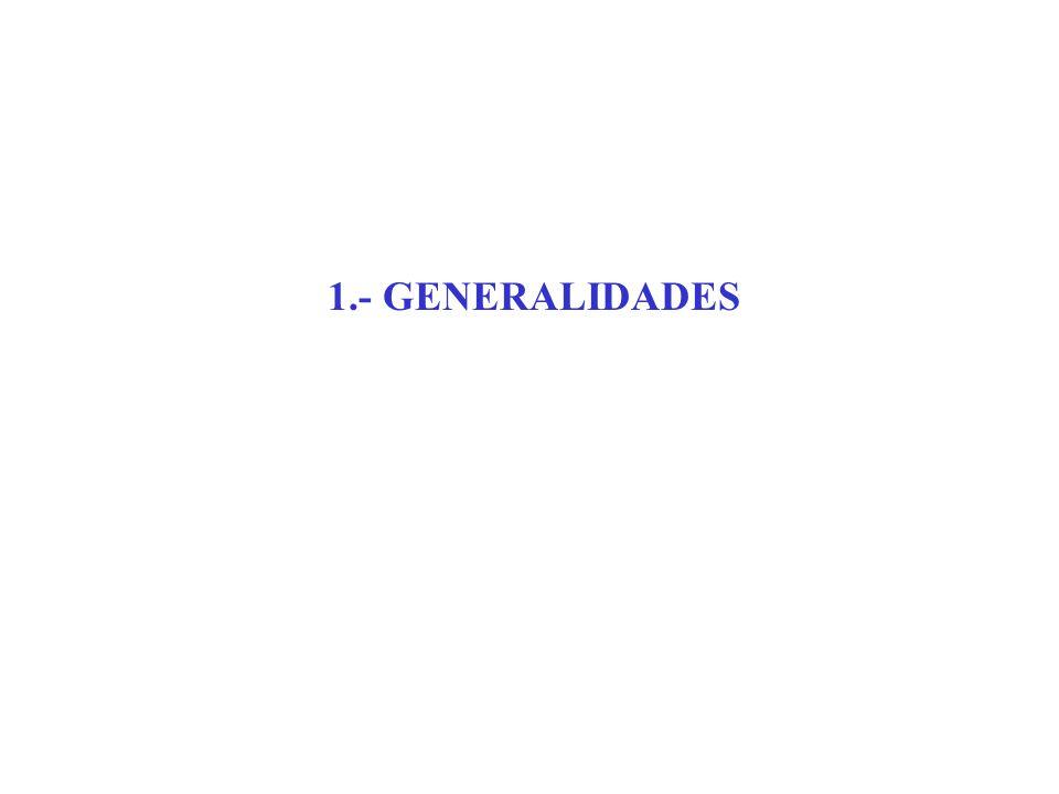 1.- GENERALIDADES