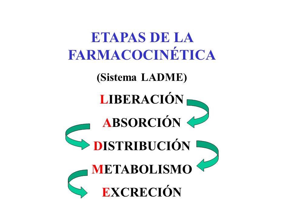 ETAPAS DE LA FARMACOCINÉTICA
