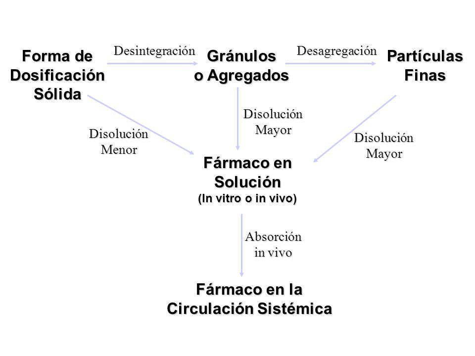 Fármaco en la Circulación Sistémica