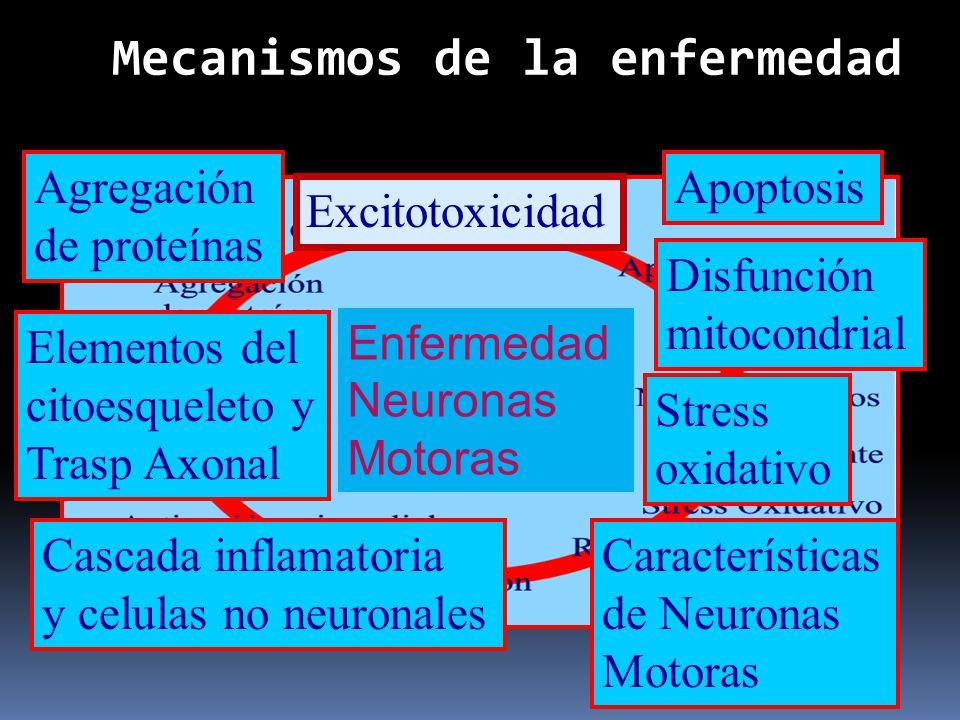 Mecanismos de la enfermedad