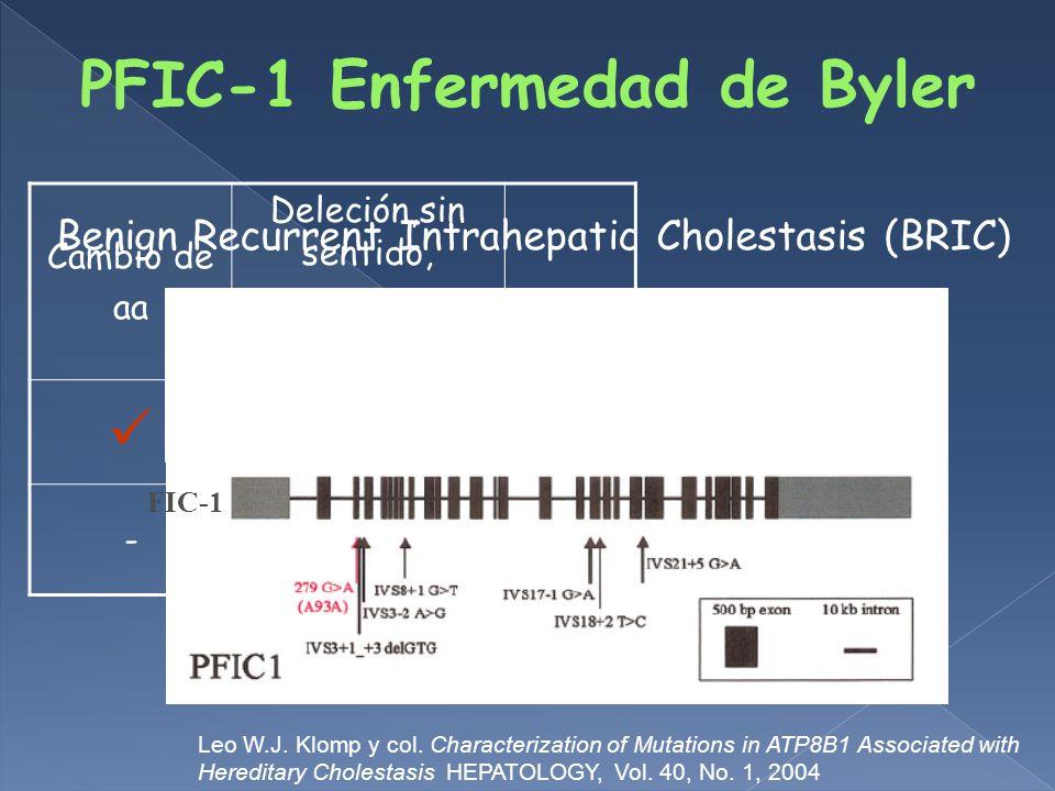 PFIC-1 Enfermedad de Byler