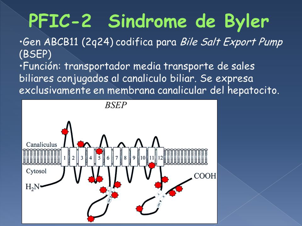 PFIC-2 Sindrome de Byler