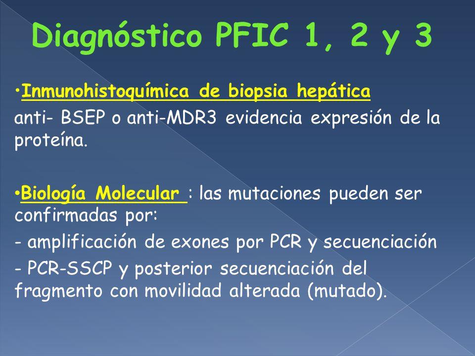 Diagnóstico PFIC 1, 2 y 3 Inmunohistoquímica de biopsia hepática