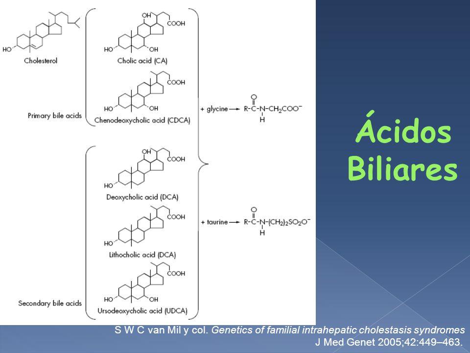 Ácidos Biliares S W C van Mil y col. Genetics of familial intrahepatic cholestasis syndromes.