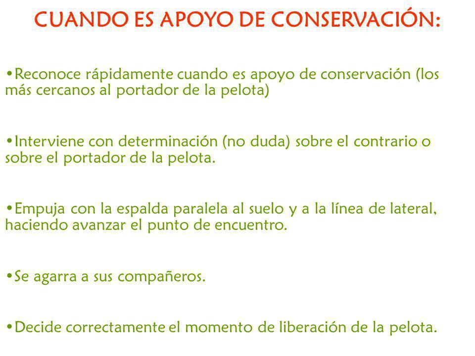 CUANDO ES APOYO DE CONSERVACIÓN: