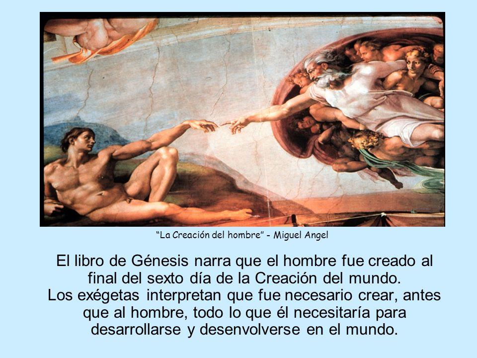 La Creación del hombre - Miguel Angel