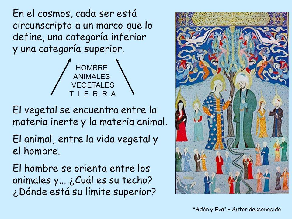 El vegetal se encuentra entre la materia inerte y la materia animal.