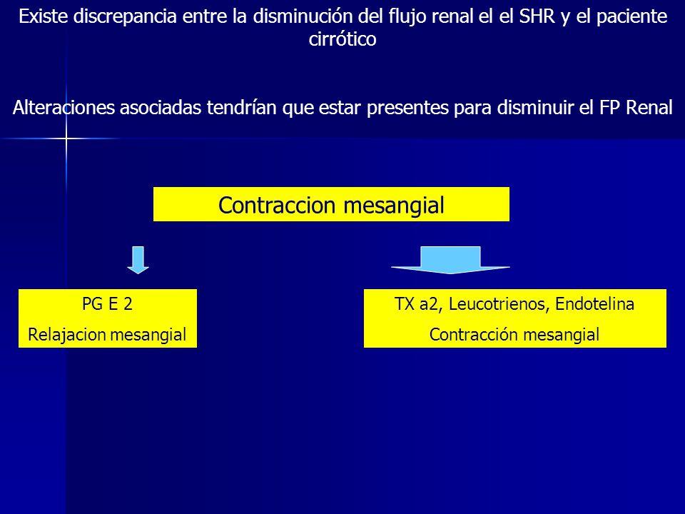 Contraccion mesangial